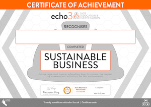 Sustainable business Certificate